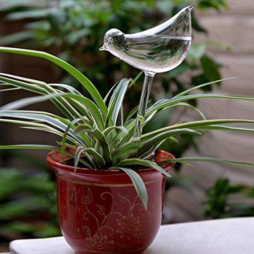 Kicode handgefertigtes Glas Vogel Waterer Für Ihre Topfpflanzen und Blumen halten Watered