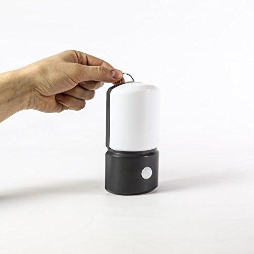 AußenInnen Sicherheits-Wandlicht mit Bewegungsmelder und Montage-Kit vielseitig aufhängbar batteriebetrieben LEDs weiß 155cm von Festive Lights