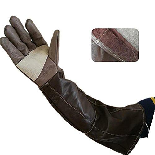 DAN Animal Handling Anti-Biss  Kratzer Handschuhe für Hund Katze Vogel Schlange Papagei Eidechse Wildtiere Schutzhandschuhe
