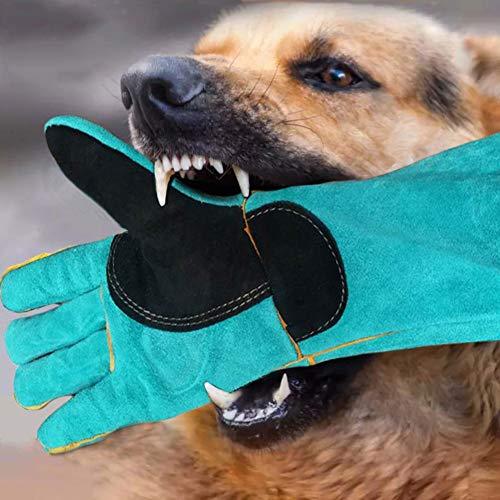 Rziioo Animal Handling Handschuhe Anti-BissKratzer Gardening Wildtiere Schutzhandschuhe Für Cat Dog Vogel Schlange Papagei EidechseGreen1Pair