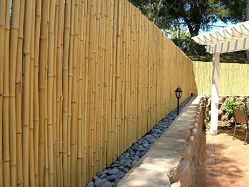 DE-COmmerce Hochwertiger Garten Zaun Sichtschutz Bambus ATY NATURE I Garten Terrasse Balkon Sichtschutz Bambus mit geschlossenen Rohren I Windschutz Bambus 180 cm x 250 cm