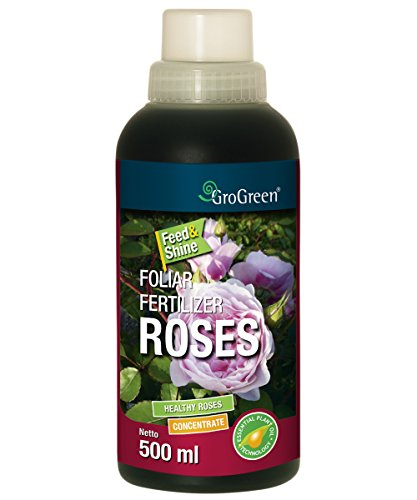 GroGreen Feed Shine Rosen 500 ml Rosendünger Flüssig Konzentrat FlascheBioaktiv Weniger Einsatz von Fungiziden nötig Genießen Sie gesunde und vitale Rosen