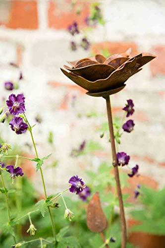 KUHEIGA GartensteckerDekoblume Rose Edelrost Höhe 80cm Ø 12cm aus Metall