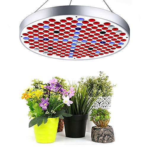 LED VOLLSPEKTRUM Pflanzenlampe Lovebay 50W 250LED Wachstumslampe ähnlich dem Sonnenlicht Überwintern Grow light für Büro Haus Zimmerpflanzen Garten Aquatische Pflanzen Blumen Gemüse
