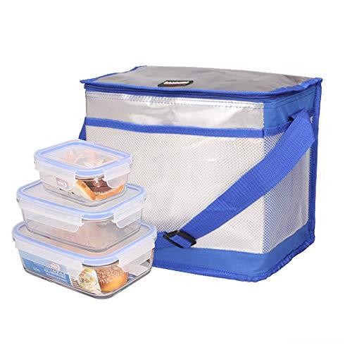AiYoYo Kühltasche Faltbar Picknicktasche Thermotasche Doppelschichtverdickung Aluminiumfolie Wasserdicht Lebensmitteltransport Tasche für Büro Arbeit Outdoor Camping ReisenBlau 16L