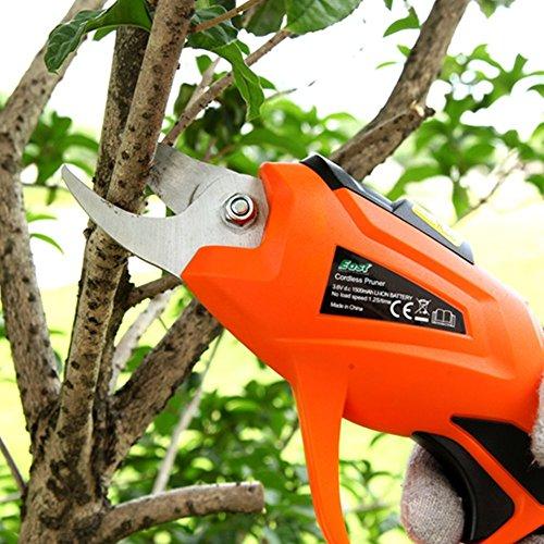 Professionelle Elektrische Gartenschere HomeYoo wiederaufladbar Schere Astschere Pflaume Trauben Olivenbäume Elektro Blechschere für Baumsäge Bonsai Garten Bäume Blumen36V 15AH 12S  Zeit 15-20min Orange
