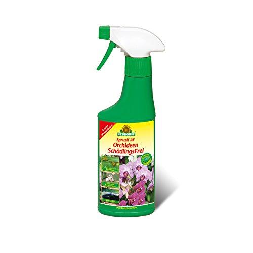 NEUDORFF Spruzit AF OrchideenSchädlingsFrei 250 ml