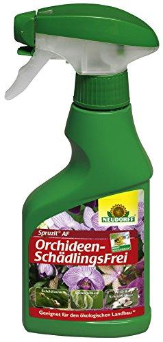 Neudorff 00827 Spruzit AF OrchideenSchädlingsFrei Anwendungsfertig 250 ml