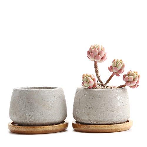 Rachels 65CM Zement Serie Sukkulenten Töpfe Kaktus Pflanze Töpfe Mini Blumentöpfe Klein Rund mit Untersetzer 2er Set