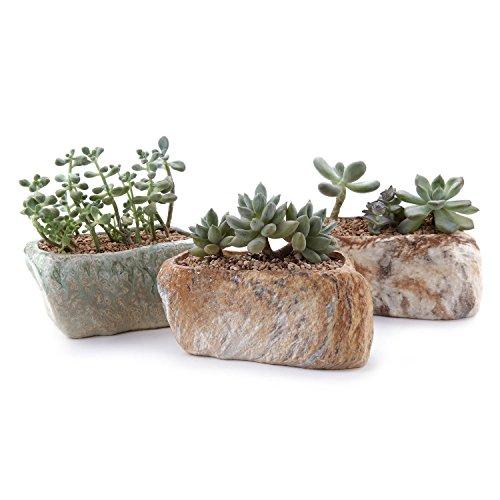 T4U 135CM Keramik Sukkulenten Töpfe Kaktus Pflanze Töpfe Mini Blumentöpfe Unregelmäßig 3 Steinforme 3 Stücke Set