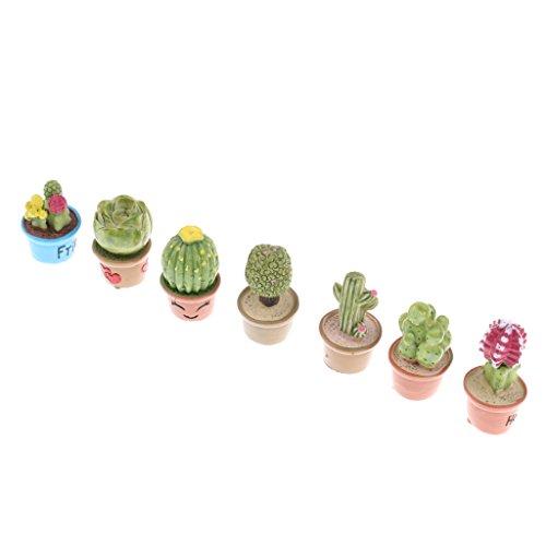 Homyl 7 Stück Miniatur Sukkulenten Pflanze für 112 Puppenstube Zimmer Garten Deko