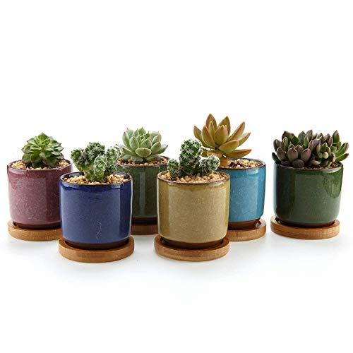 T4U 63cm Keramik Sukkulenten Töpfe Kaktus Pflanze Töpfe Mini Blumentöpfe EIS Crack Höher Serie 6 Farben Set mit Bambus Untersetzer