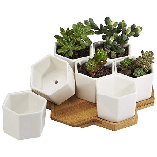 First Park Blumentopf aus Keramik sechseckig Kaktus mit Bambus-Tablett Weiß
