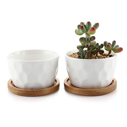 T4U 8CM Keramik Weiß Tüpfelchen Design Sukkulenten Töpfe Kaktus Pflanze Töpfe Mini Blumentöpfe mit Bambus-Untersetzer 2er Set