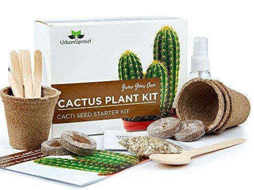 kaktus Samen Set – DIY wachsen Ihre Pflanzen-Kaktus im geschlossen – Ein ungewöhnliches Geschenk für die Gartenarbeit – Körner Anzuchttöpfe Erde für das Cactus
