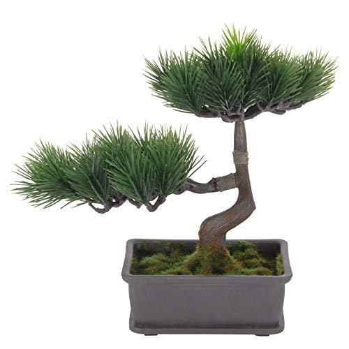 Bonsai künstlicher Baum Pinus 24x15x23cm mit Schale Kunststoff Bonsaibaum