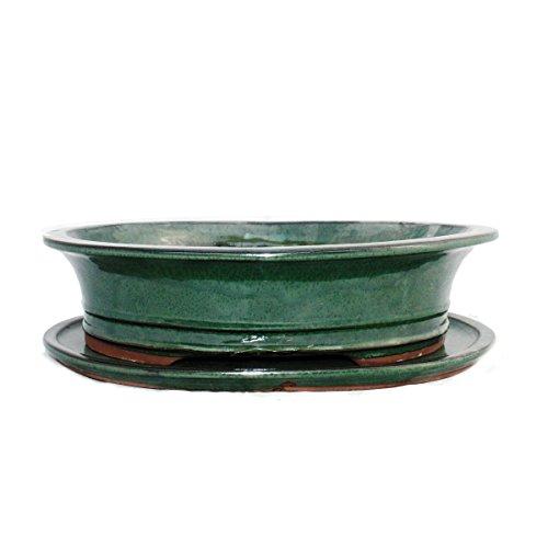 Bonsai-Schale mit Unterteller Gr 5 - grün - oval - Modell O4 - L 31cm - B 245cm - H 85cm