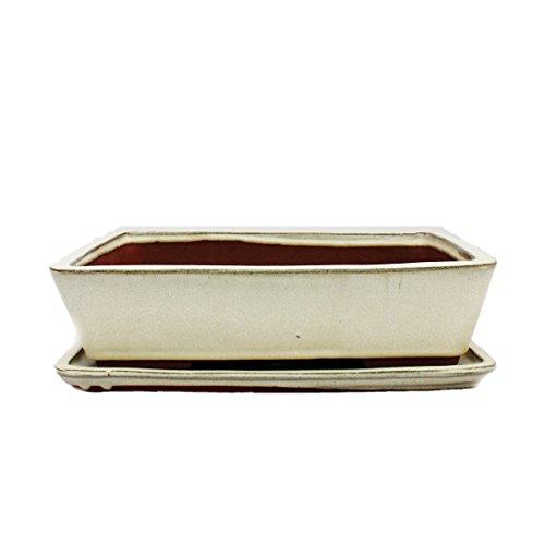 Bonsai-Schale mit Unterteller Gr 5 - hellbeige - eckig - Modell G30 - L 31cm - B 23cm - H 8 cm