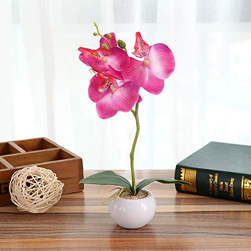TAOtTAO Kleiner runder Topf mit DREI Blumen Phalaenopsis-Bonsai einschließlich Töpfen Kunstblumen Simulierte Pflanzen-Bonsai-Innenschmetterlings-Orchideen-Bonsaianlagen-Eleganz Tranquilit B
