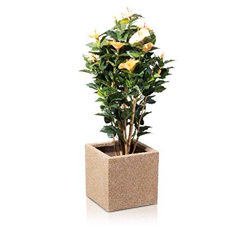 Blumenkübel Pflanzkübel CUBO 30 Fiberglas 30x30x30 cm beige strukturiert