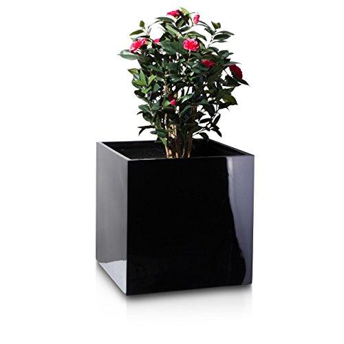 Pflanzkübel Blumenkübel CUBO 70F Fiberglas 70x70x70 cm schwarz hochglanz