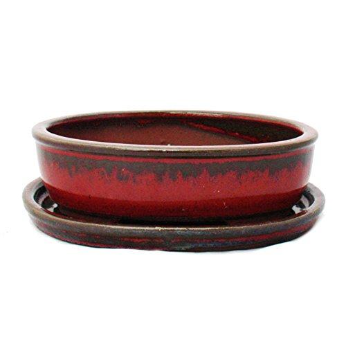 Bonsai-Schale mit Unterteller Gr 2 - Sonderglasur mit edlem Farbverlauf-Effekt - oval O3 - rot-grau - L 15cm - B 115cm - H 45cm