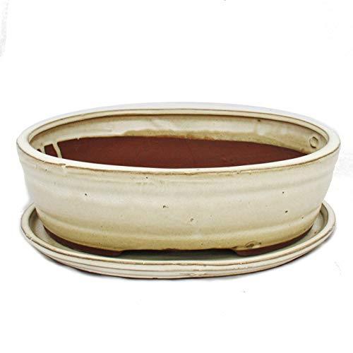 Bonsai-Schale mit Unterteller Gr 4 - oval O7 - hellbeige - L 26cm - B 21cm - H 75cm