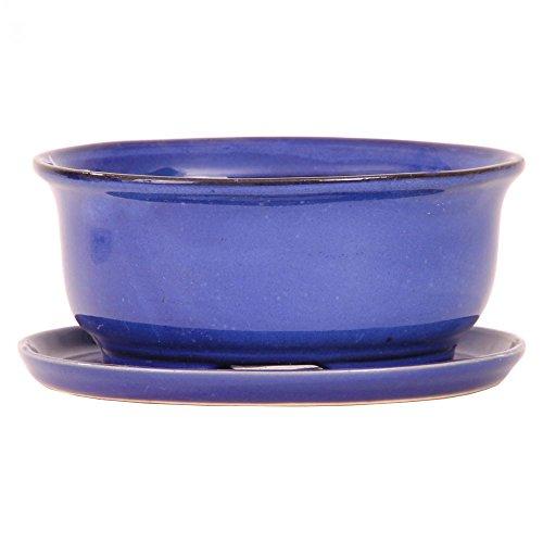 Bonsai - Schale oval 125 x 105 x 55 cm m Untersetzer dunkelblau 16004