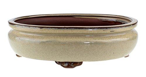 Urban Lifestyle Bonsai-Schale Keramik Beige Glasiert ovale Form L 155cm x B 125cm x H 5cm