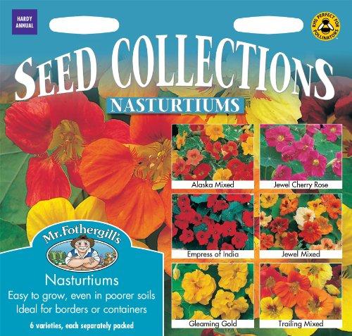 Mr Fothergills Blume Kapuzinerkresse Collection 6 Samen Arten
