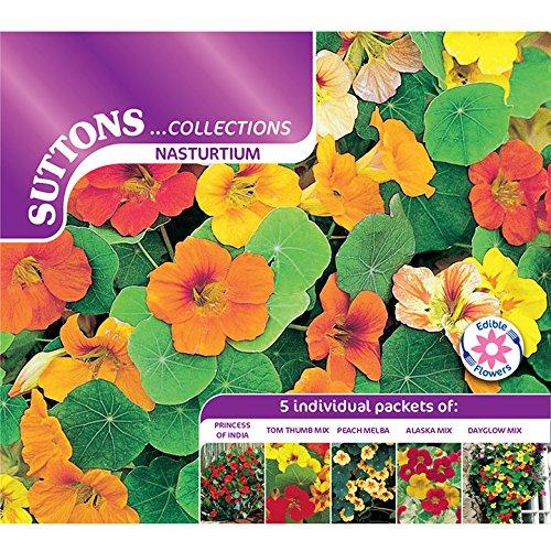 Suttons Seeds 139827 Samen Kapuzinerkresse Kollektion