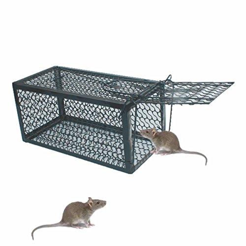 TIFANTI Mausefalle Kastenfalle Lebendfalle Falle Tierfalle Menschlich Mäusefalle Professinonelle Kastenfalle für Innen außen Küche Garten Haus Kastenfalle