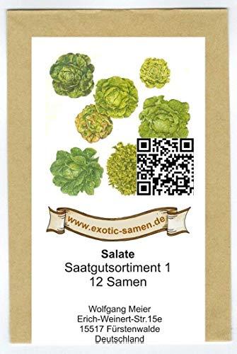 Samen - Saatgutsortiment - Set - Mischung - Mix - Salatbeet 1-12 Sorten - ca 2900 Samen