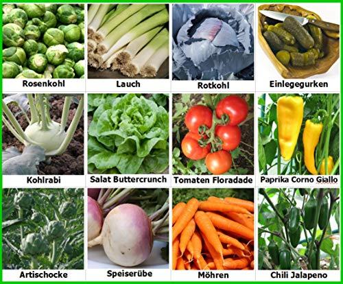 Traumgarten2014 Gemüse Set 1 Mix Tomate Paprika Chili Lauch Einlegegurken Kohlrabi Artischocken Speiserübe Salat Samen Saatgut