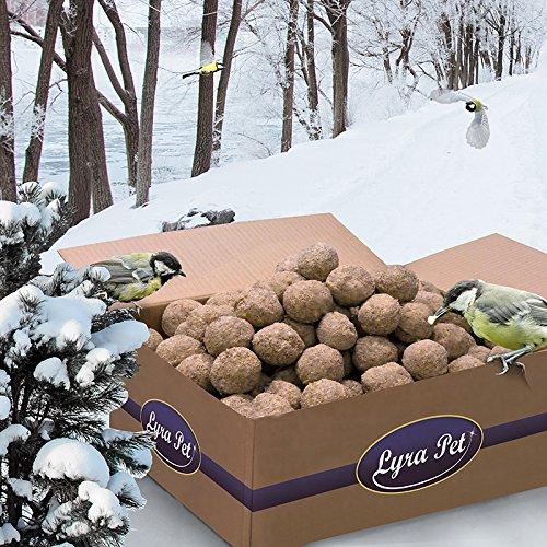 Lyra Pet 200 x 90 g Meisenknödel ohne Netz vom Hersteller Vogelfutter Fettfutter