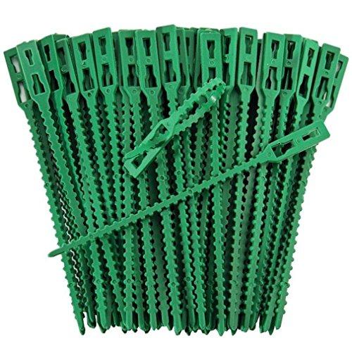 Pflanzenclips starke stabile Pflanzenklammern extra groß für Spaliere Rosenbogen Rankhilfe etc  iapyx 50
