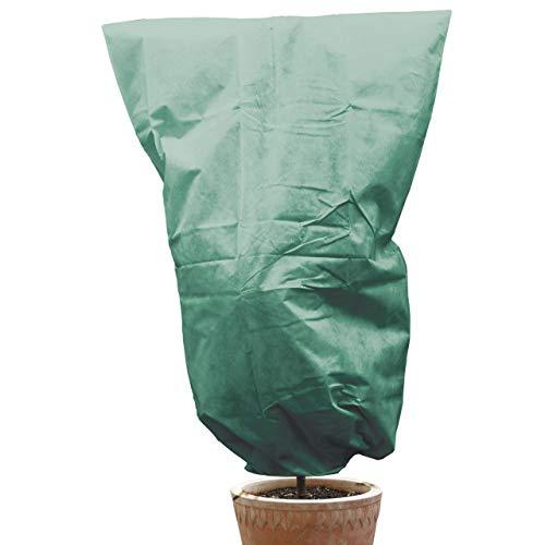 AFP Winterschutz Vlieshaube grün 200 x 240cm 70gqm - XXL-Kübelpflanzensack Gartenvlies Atmungsaktiv für Olivenbäume PalmenFrostschutz PflanzenKordel  2 Jutesäckchen Gratis