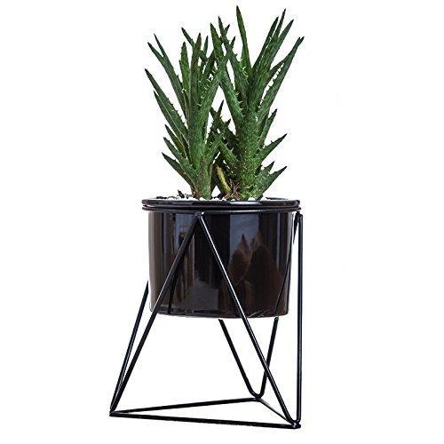 Blumentöpfe für innen von YandMTM 15 cm modern auch für den Garten geeignet weiß aus Keramik rund mit Metall-Luftpflanzen-Ständer für Sukkulenten Kaktus