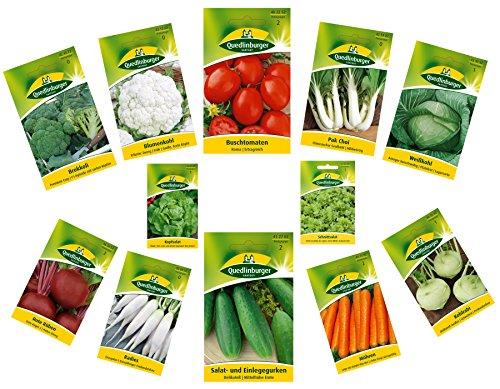 12 Sorten  Gemüsesamen Sortiment  für Anfänger geeignet  robuste Mischung