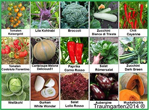 Gemüse Set 2 Broccoli Kürbis Gurken Kürbis Zucchini Weißkohl Aubergine Kohlrabi  Samen Saatgut