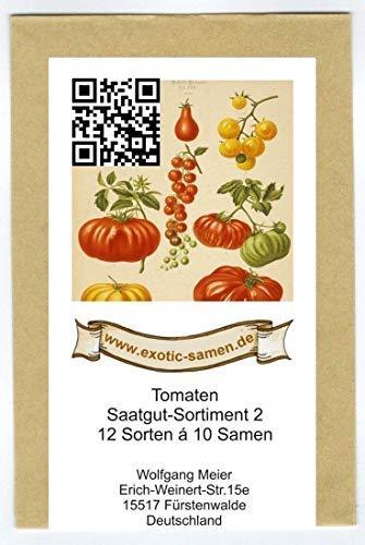 Samen - Saatgutsortiment 2 - Set - Mix - Mischung - historische samenechte Tomatensorten - 12 Sorten á 10 Samen