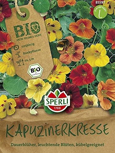 Blumensamen - Bio-Kapuzinerkresse von Sperli-Samen