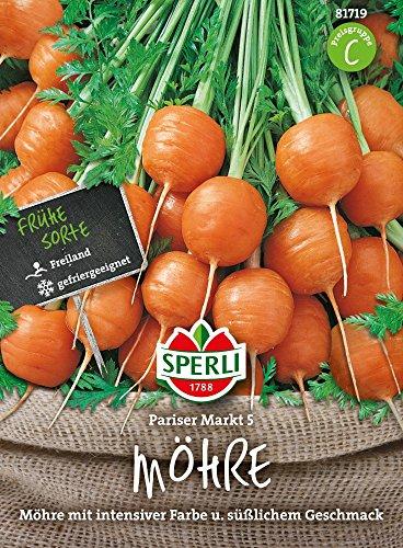 Möhrensamen - Möhren Pariser Markt 5 von Sperli-Samen