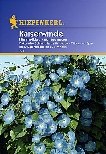 Sperli Blumensamen Kaiserwinde Ipomoea tricolor blaugrün