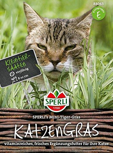 Sperli-Samen Katzengras SPERLIs Mini-Tiger-Gras 30 g