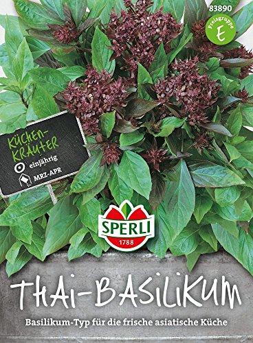 Sperli-Samen Thai Basilikum