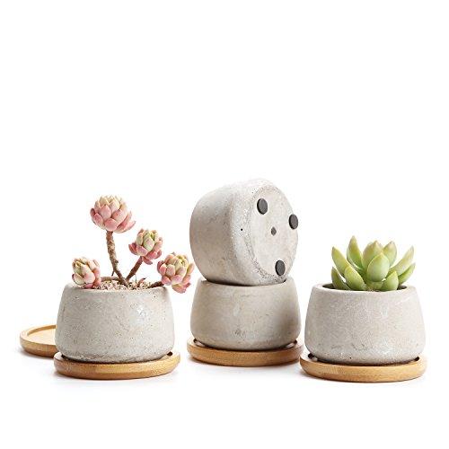 Rachels 65CM Zement Serie Sukkulenten Töpfe Kaktus Pflanze Töpfe Mini Blumentöpfe Klein Rund mit Untersetzer 4er Set